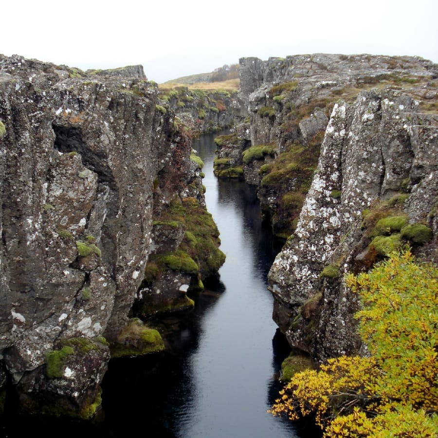 TravelXL-van-Limburg-IJSLAND-NP-Thingvellir