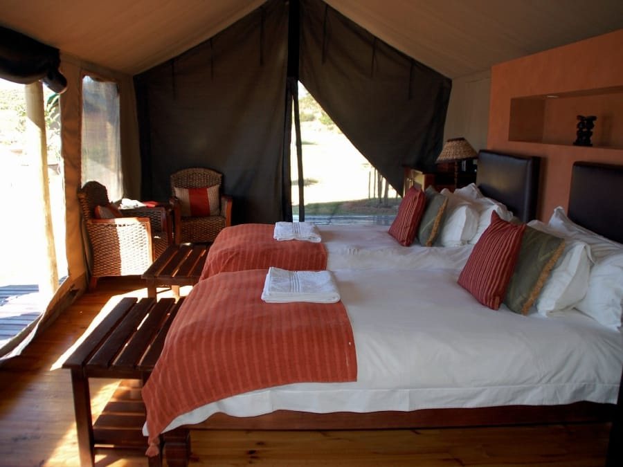 TravelXL-van-Limburg-Zuid-AFRIKA-Buffelsdrift-lodge-tent