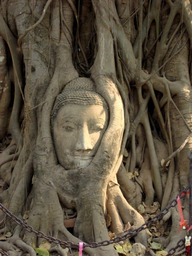 TravelXL-van-Limburg-THAILAND-Wat-Mahathat