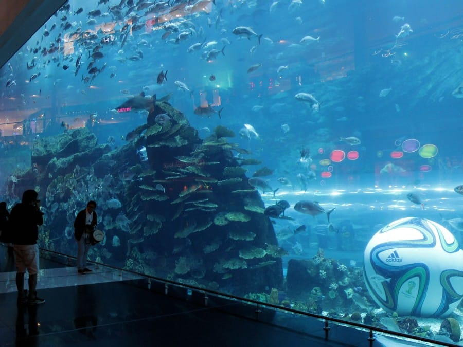 TravelXL-van-Limburg-DUBAI-Aquarium