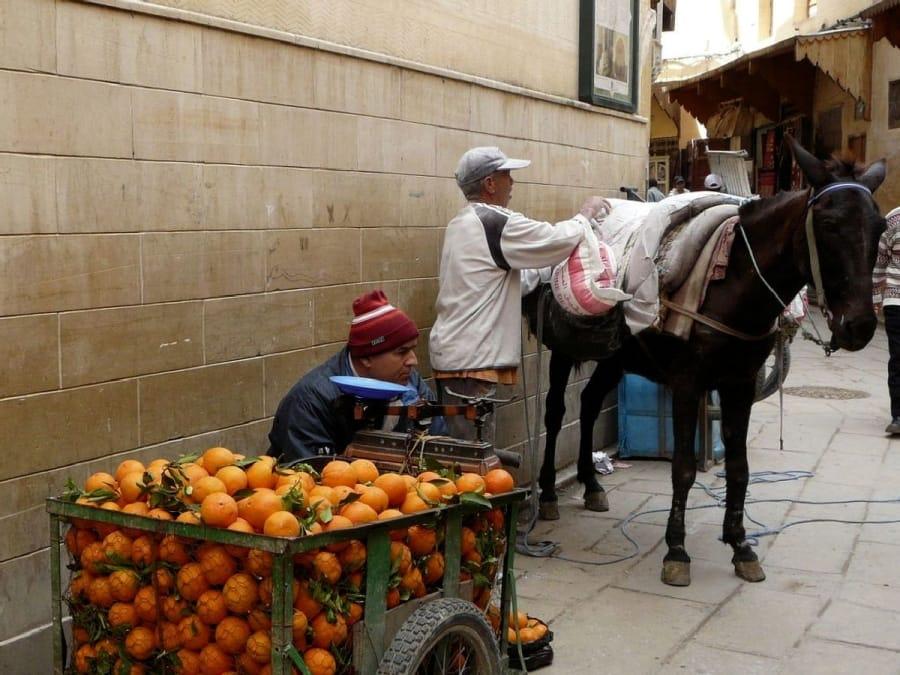 TravelXL-van-Limburg-MAROKKO-Fes-souk-sinaasappelen