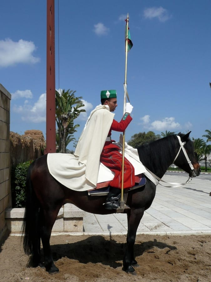 TravelXL-van-Limburg-MAROKKO-lijfwacht-te-paard