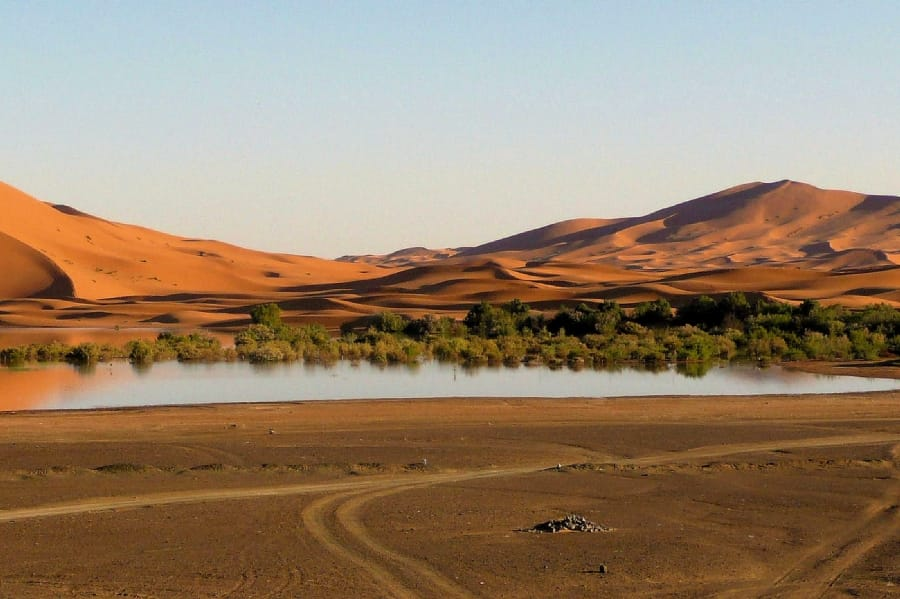 TravelXL-van-Limburg-MAROKKO-oase-ErgChebbi-woestijn