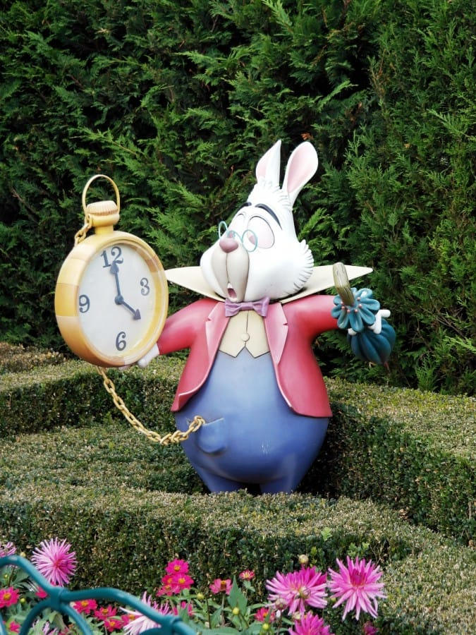 TravelXL-van-Limburg-DISNEYLAND-Alice-in-Wonderland
