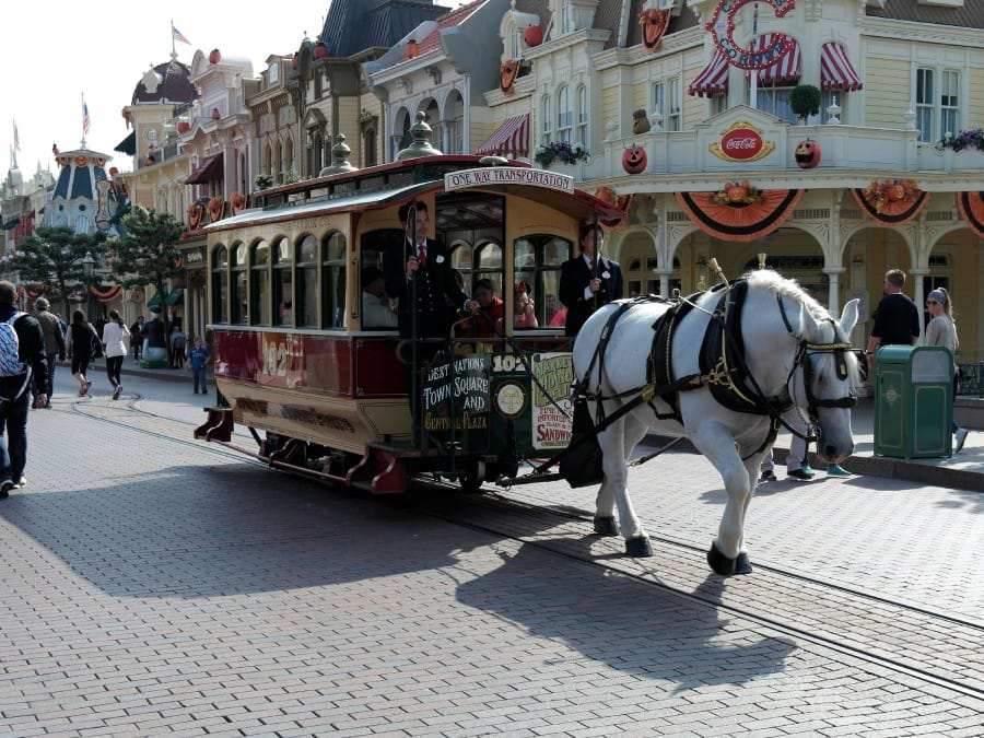 TravelXL-van-Limburg-DISNEYLAND-Mainstreet-USA