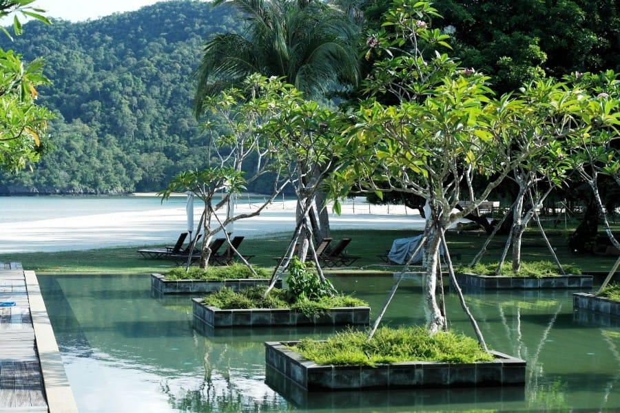 TravelXL-van-Limburg-MALEISIE-Langkawi-mangrove