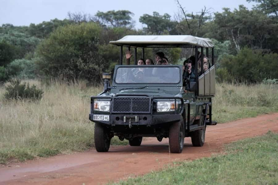 TravelXL-van-Limburg-LIMPOPO-game-drive-jeep
