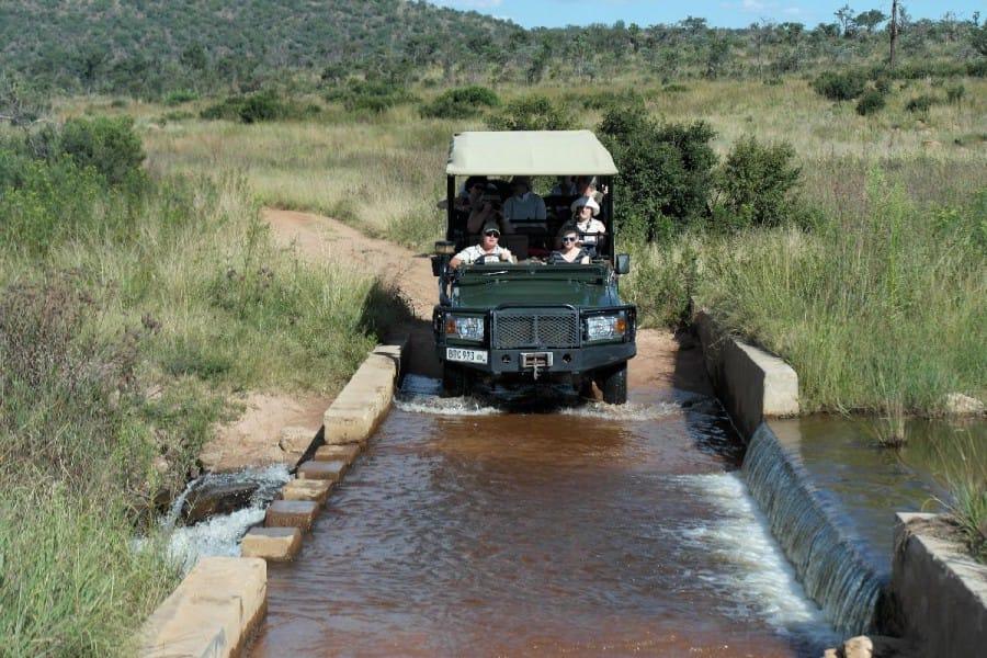 TravelXL-van-Limburg-LIMPOPO-gamedrive-met-jeep