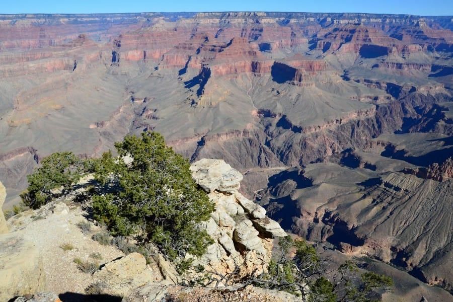 travelxl-van-limburg-usa-grand-canyon-prachtig-uitzicht