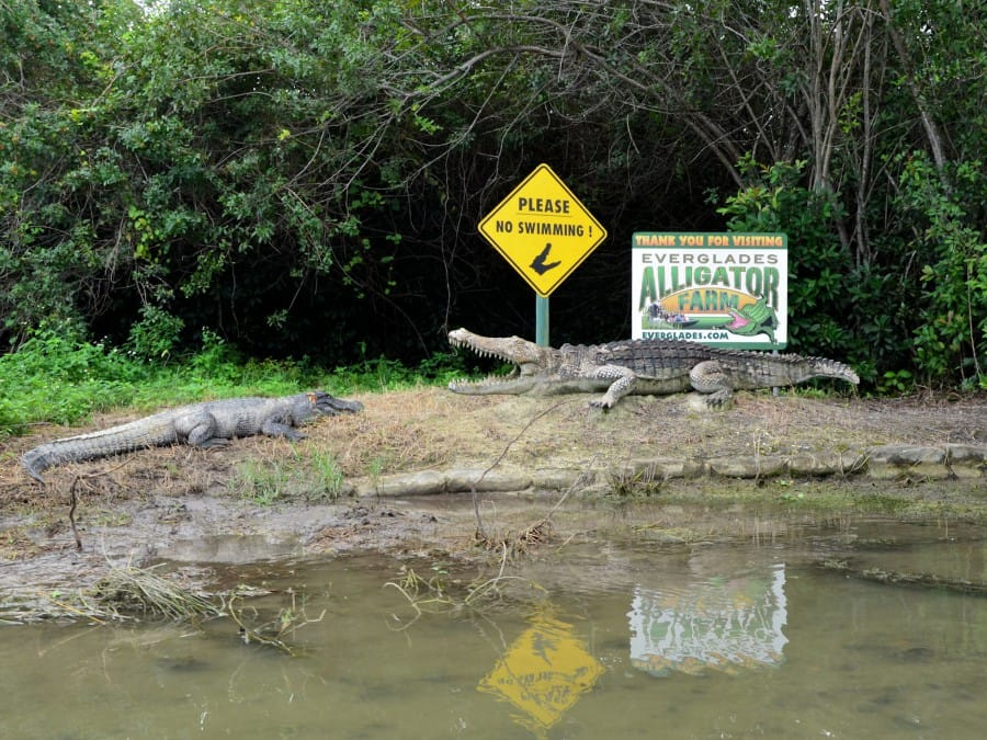 travelxl-van-limburg-usa-alligatorfarm