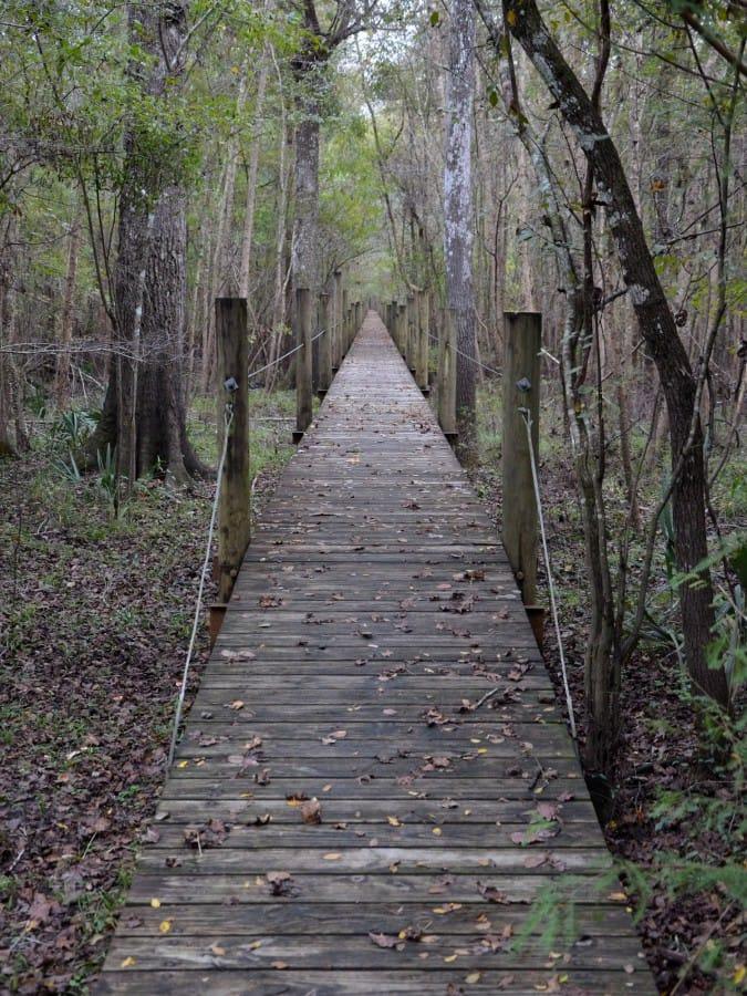 travelxl-van-limburg-usa-houten-loopbrug