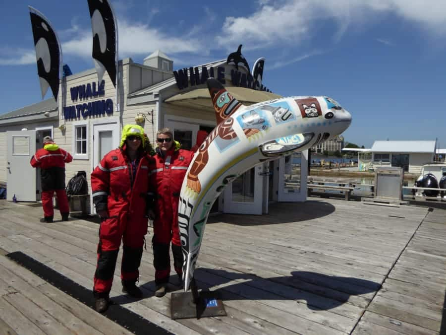 travelxl-van-limburg-canada-whalewatching