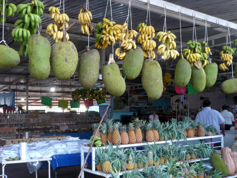 travelxl-van-limburg-puerto-vallarta-tropisch-fruit