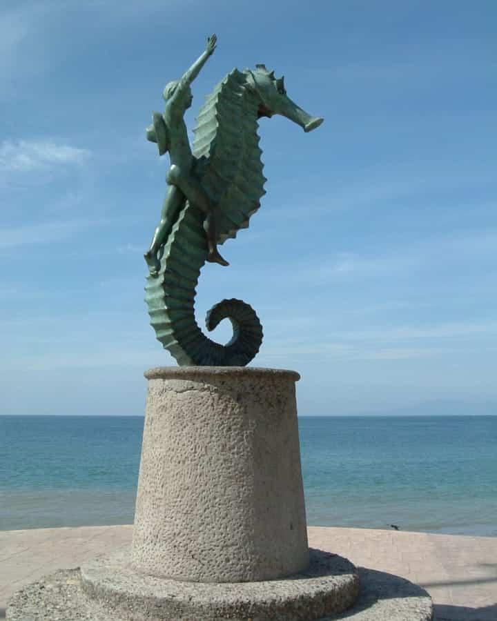 travelxl-van-limburg-puerto-vallarta-zeepaardje