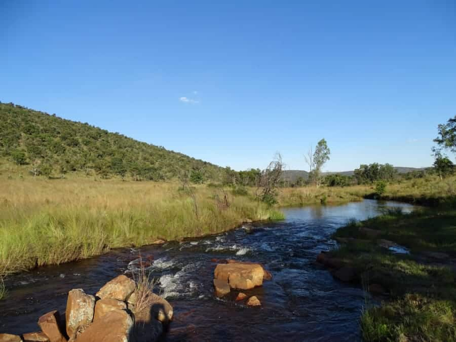 travelxl-van-limburg-zuid-afrika-gamedrive-riviertje