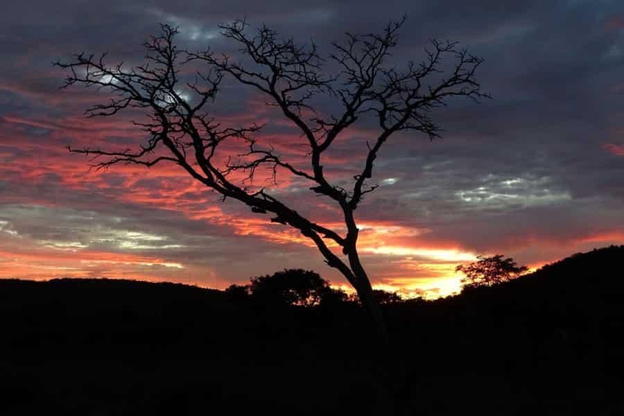 travelxl-van-limburg-zuid-afrika-welgevonden-zonsondergang