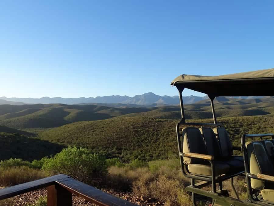 travelxl-van-limburg-zuid-afrika-oudtshoorn-gamedrive