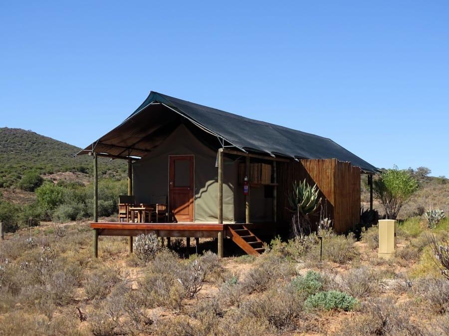 travelxl-van-limburg- zuid-afrika-oudtshoorn-luxe-tent