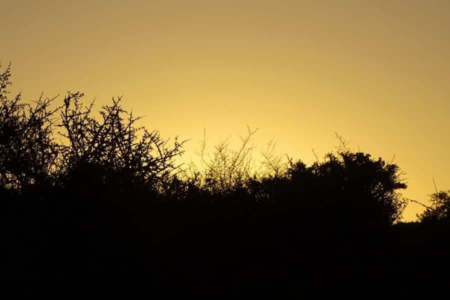 travelxl-van-limburg-zuid-afrika-zonsondergang-lodge